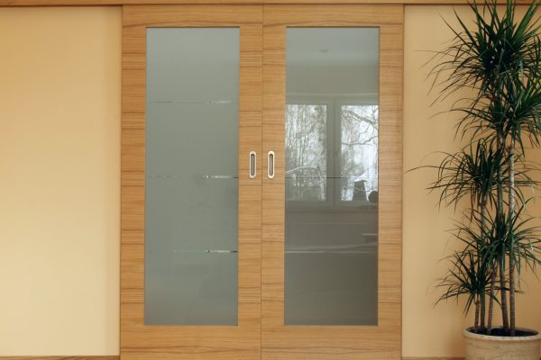 Closeup of sliding wooden door and dracena