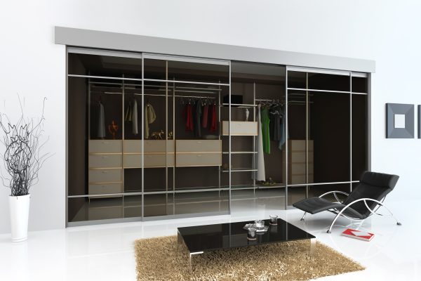 modern interior with cloakroom ( 3D rendering )
